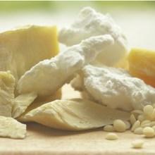 categorie-boters-plantaardig-biologisch.jpg